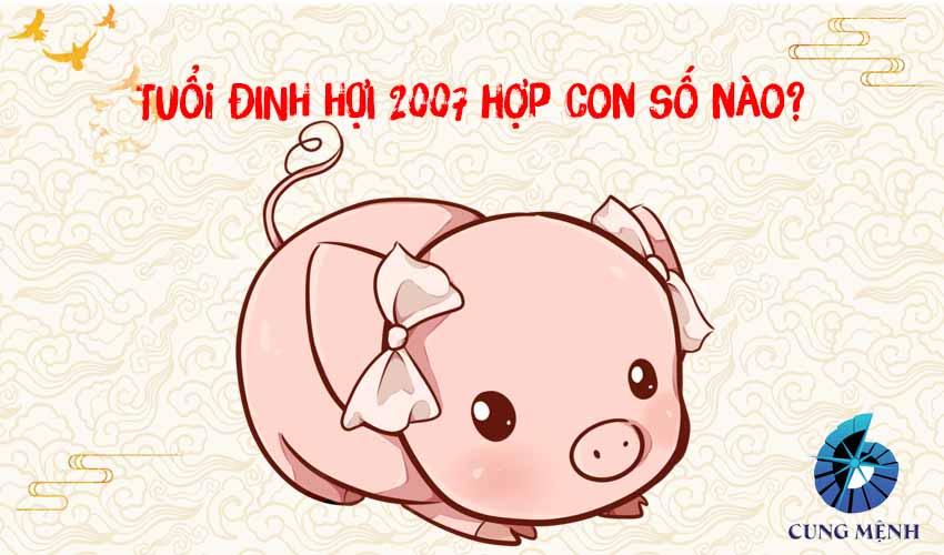 Số hợp tuổi Đinh Hợi 2007 là con số nào?