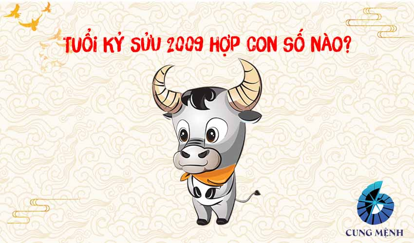 Số hợp tuổi Kỷ Sửu 2009